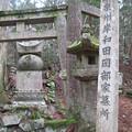 Photos: 高野山金剛峯寺 奥の院(高野町)泉州岸和田岡部家墓所