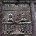 高野山金剛峯寺 奥の院(高野町)肥前鍋島家墓所