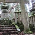 写真: 高野山金剛峯寺 奥の院(高野町)筑前黒田家墓所