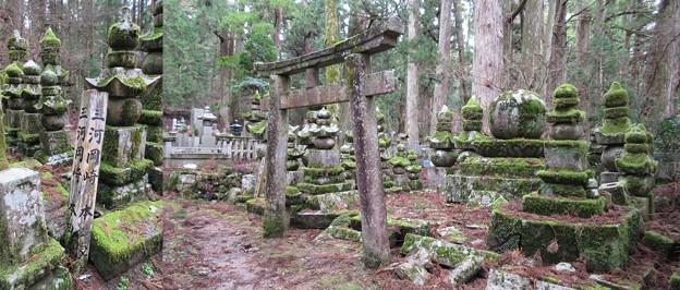 写真: 高野山金剛峯寺 奥の院(高野町)三河岡崎本多家墓所