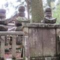 高野山金剛峯寺 奥の院(高野町)播磨竜野脇坂家墓所