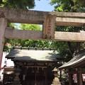 恵比寿神社(渋谷区恵比寿西)
