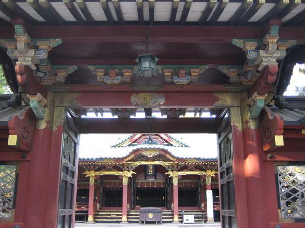 根津神社(文京区根津)唐門・拝殿