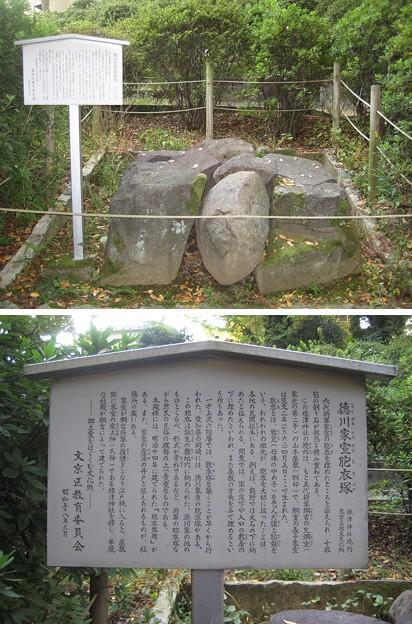根津神社(文京区根津)徳川家宣胞衣塚