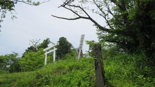 蒲原城(清水区)本郭