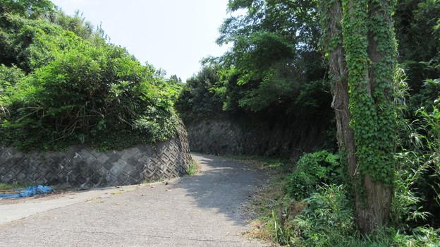 蒲原城(清水区)先は二郭