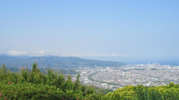 梶原山(清水区営 梶原山公園)山頂
