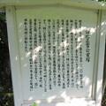 菩提樹院(葵区)由井正雪首塚