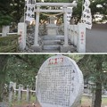 写真: 三保の松原(清水区)羽車神社