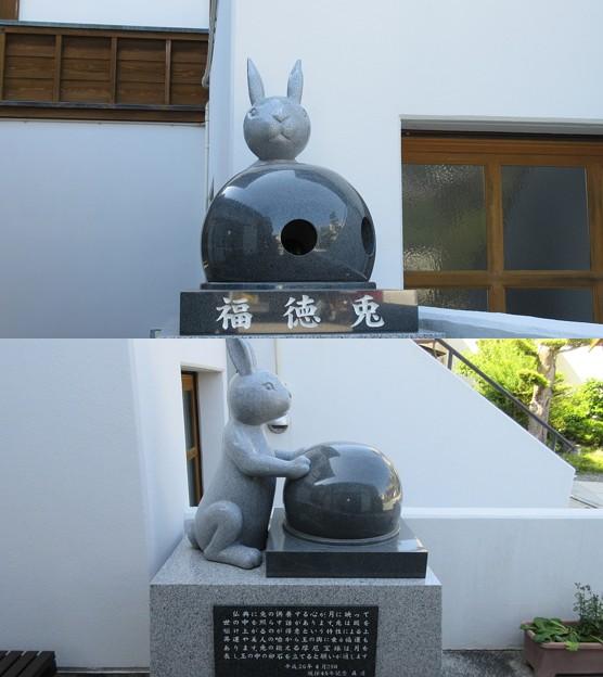 富春院(葵区)兎と摩尼宝珠