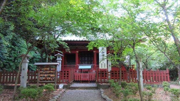 駿河国総社 浅間神社(静岡市葵区)麓山神社