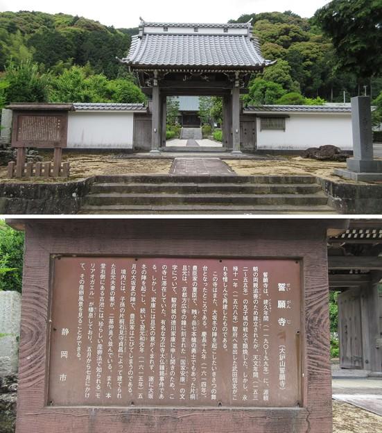 誓願寺(駿河区)
