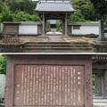 Photos: 誓願寺(駿河区)