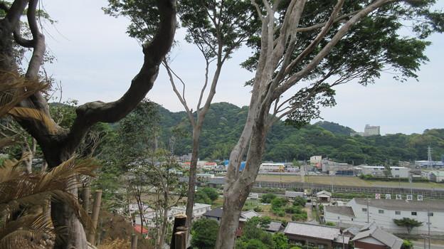 石脇城(焼津市)東