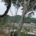 Photos: 石脇城(焼津市)東