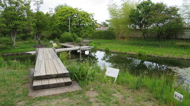 田中城下屋敷(藤枝市)泉水跡