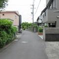 Photos: 田中城(藤枝市)大手一之門馬出