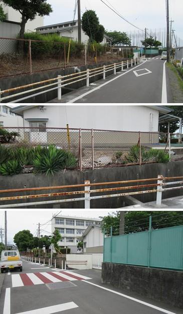 田中城(藤枝市)三日月堀・清水御門