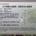 Photos: 長慶寺(藤枝市)