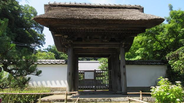 長寿寺(鎌倉市)山門