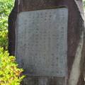 源頼朝像(鎌倉市営 源氏山公園)