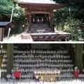 佐助稲荷神社(鎌倉市)本殿