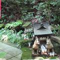 Photos: 佐助稲荷神社(鎌倉市)古社?
