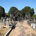 谷中霊園(台東区)阿部家墓所