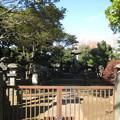 谷中霊園(台東区)