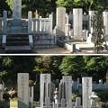 谷中霊園(台東区)酒井家墓所