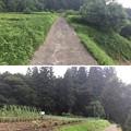 Photos: 岩櫃城(東吾妻町)天狗丸
