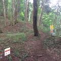 岩櫃山(東吾妻町)登山コース