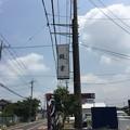 Photos: 鰻重(越谷市)