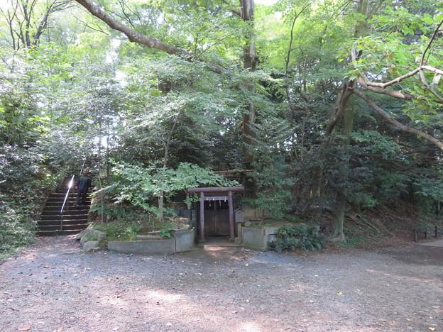 石神井城(練馬区。都立石神井公園)宇賀神社