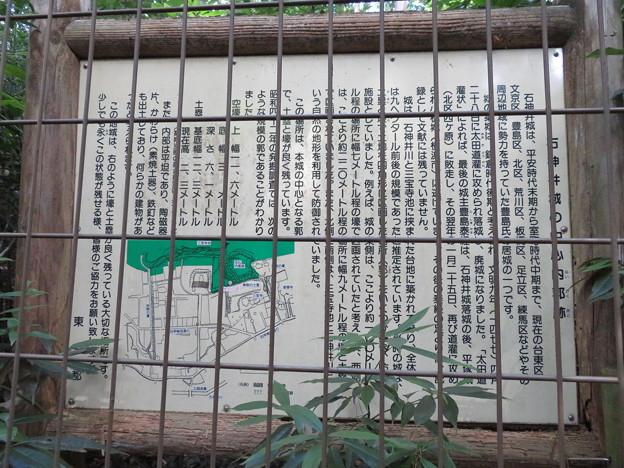 石神井城(練馬区。都立石神井公園)主郭南