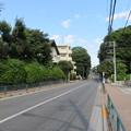 Photos: 石神井城(練馬区。都立石神井公園)かつては三宝寺池