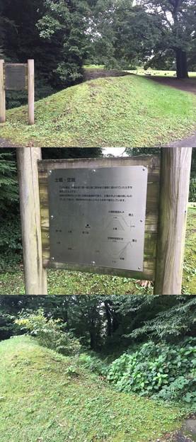 深大寺城(調布市。都立神代植物公園)