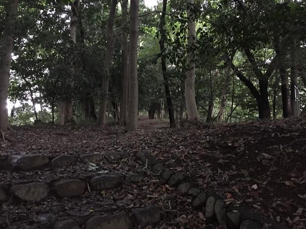 高幡城/高幡不動尊(日野市)二郭
