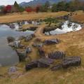 Photos: 小幡陣屋・楽山園(甘楽町小幡)庭園