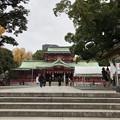 Photos: 富岡八幡宮(江東区)
