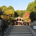 八大神社(左京区)拝殿