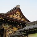 Photos: 西本願寺唐門(下京区)伝 木幡山伏見城移築門