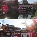 写真: 朝日山平等院鳳凰堂(宇治市)