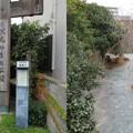 Photos: 伏見みなと公園(伏見区)伏見三十石船乗り場