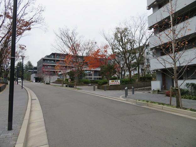 指月伏見城(伏見区)木幡山城時は松平忠輝屋敷