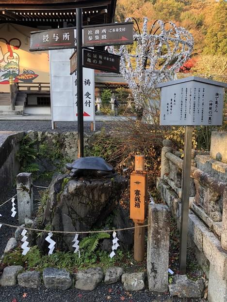松尾大社(西京区)撫で亀さん