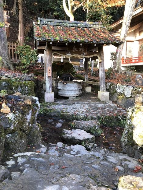 松尾大社(西京区)神泉 亀の井