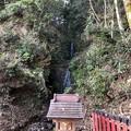 松尾大社(西京区)霊亀の滝