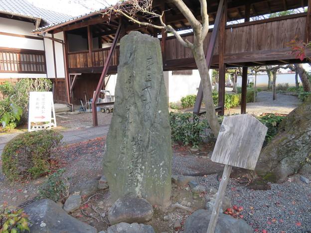 Photos: 阿弥陀寺(上京区)芭蕉句碑