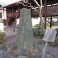 阿弥陀寺(上京区)芭蕉句碑